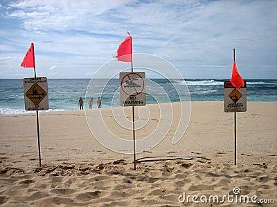 North Shore warning 2