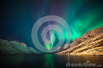 Northern lights above fjords