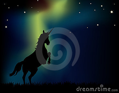 Northern Lights Unicorn