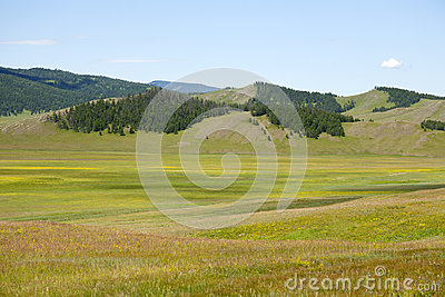 Northern Mongolian Forests and Steppes