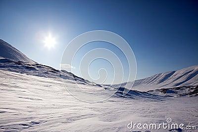 Northern Winter Landsacpe