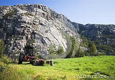 Norwegian agriculture