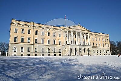 Norwegian castle