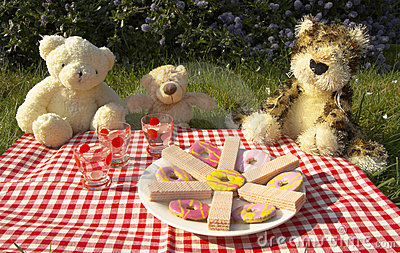 Nosi piknik