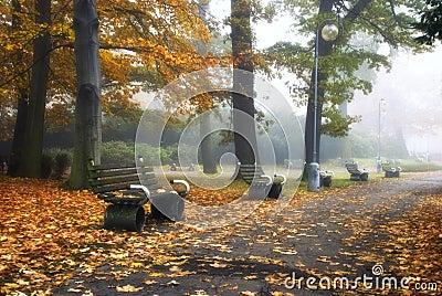 nostalgia in park