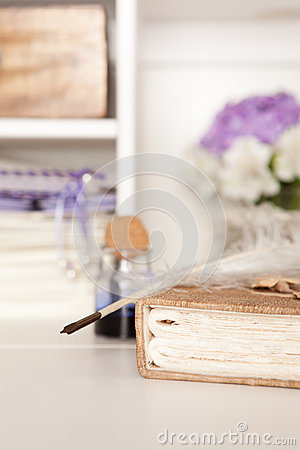 Free Nostalgic Fountain Pen And Book Stock Image - 55803551