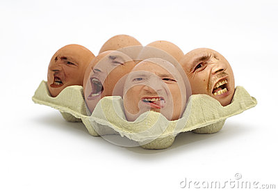 Not Free Range Eggs!