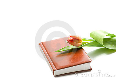 Note book and a tulip