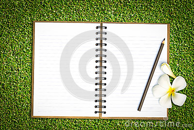 Notebook in green grass
