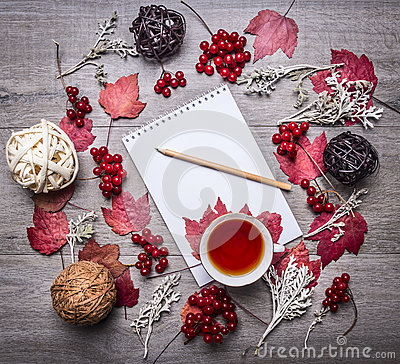 Free Notebook With A Pencil, Red Autumn Leaves, Berries Viburnum, Decorative Balls Made Of Rattan Autumn Decorations On Wooden Rust Royalty Free Stock Photography - 62200867