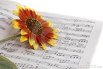 Notebooks with notes on the music & flower