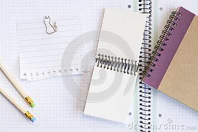 Notebooks with pens and paper