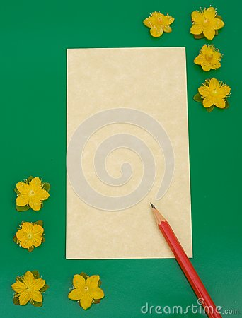 Notelet: message pad with flowers.