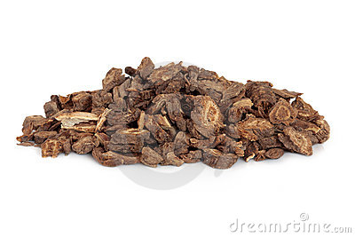 Notopterygium Root
