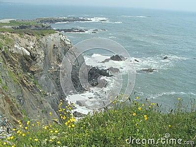Nova Scotia cliffs