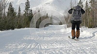 Novato do esquiador com a trilha nevado das grandes cruzes da trouxa video estoque