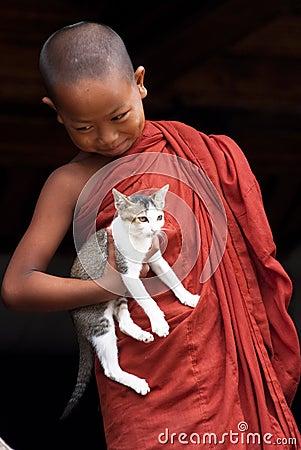 Free Novice And Cat Royalty Free Stock Photo - 28106595
