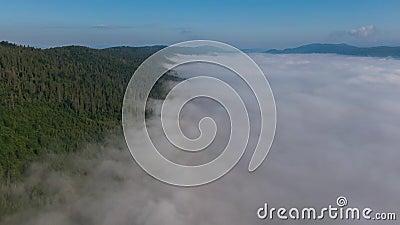 nuages de laps de temps 4K se déplaçant au-dessus du paysage brumeux Carpatian Ukraine de matin de forêt des montagnes d'arbre banque de vidéos