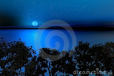 Nuit du sud