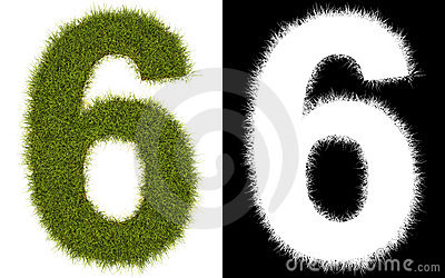 Number 6 of the grass with alpha channel