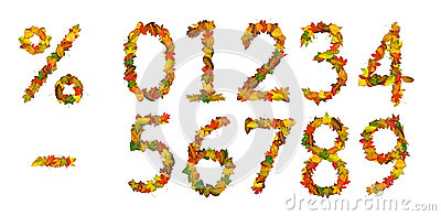 Numbers, percent sign and minus of autumn leaf