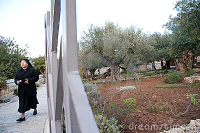 Nuns in the Garden of Gethsemane Editorial Stock Photo