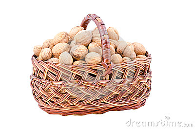 Nut in basket