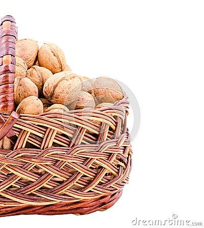 Nut in basket