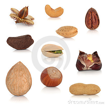 Free Nut Collection Royalty Free Stock Photography - 15169477