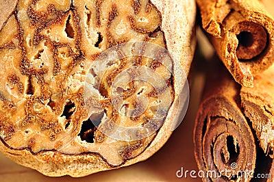 Nutmeg and cinnamon sticks