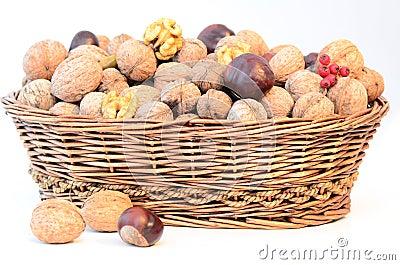 Nuts basket