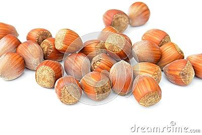 Nuts Hazelnuts Isolated White