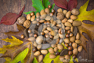 Nuts and leaves