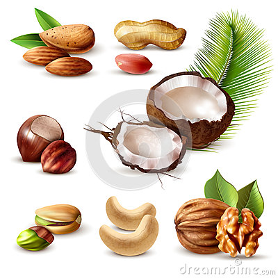 Free Nuts Realistic Set Stock Image - 97287581