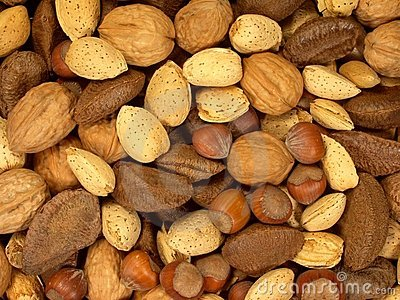Nuts About You 1