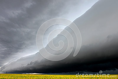 Nuvem delével da prateleira em Illinois