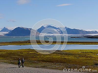Ny Alesund on Spitsbergen  - landscape