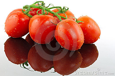 Nya tomater