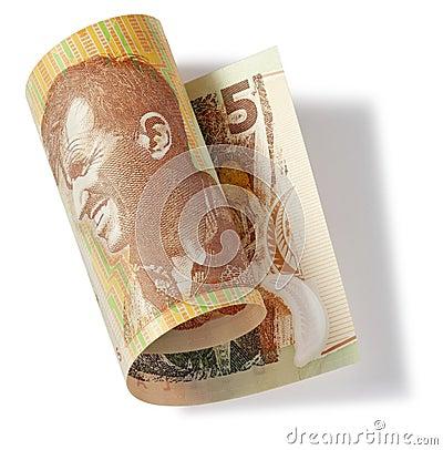 Nya Zeeland fem dollar pengar