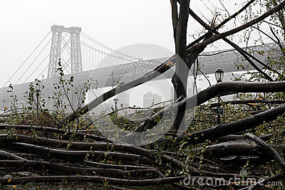 NYC Damage - Hurricane Sandy Editorial Stock Photo