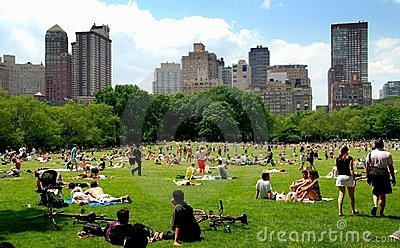 NYC: The Sheep Meadow in Central Park Editorial Stock Image