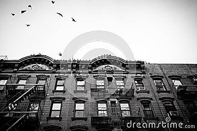 NYC Tenement Apartments