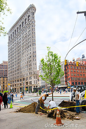 NYC Tree Planting Editorial Stock Photo