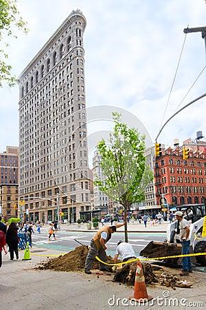 NYC Tree Planting Editorial Stock Photo