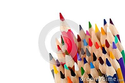 Ołówkowa lider czerwień
