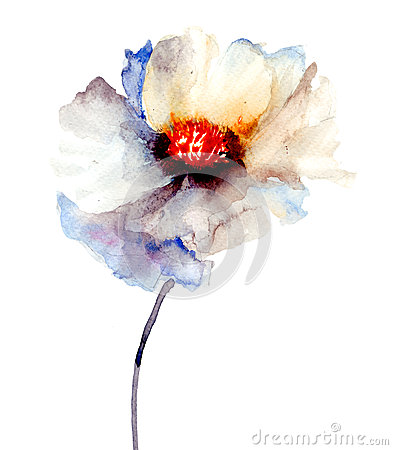 O botão da flor branca