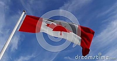 O canadense Waving In The Canada Maple Leaf Design - Vídeo De Movimento Lento De 30fps 4k video estoque