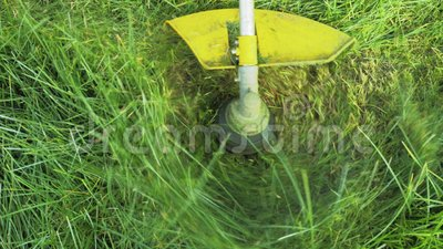 O jardineiro corta a grama com um cortador de gás filme