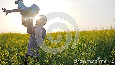 O menino alegre nas mãos parent no formulário do avião no campo, paizinho com o filho nos braços jogados em flores do prado, video estoque