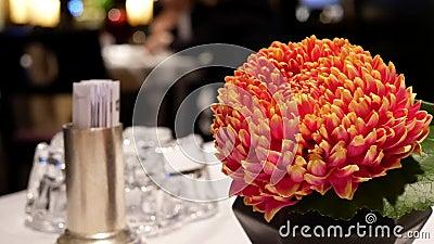 O movimento do chá quente e a flor no movimento da tabela e do borrão dos povos apreciam a refeição dentro do restaurante filme